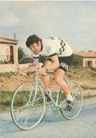 Cyclisme Bernard Thevenet   AW 167 - Radsport