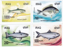 Iraq New Issue 2w019,Fish,complete Set 4 Stamps MNH- Nicer Topical Issue- ( No Paypal & No Skrill ( - Irak