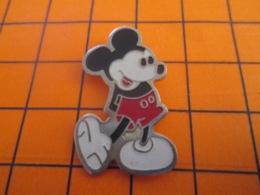1219 Pin's Pins : BEAU ET RARE : Thème DISNEY / MICKEY GRAPHISME ANCIEN - Disney