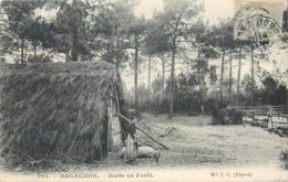 CPA 33 Gironde Arcachon Hutte En Forêt - Arcachon