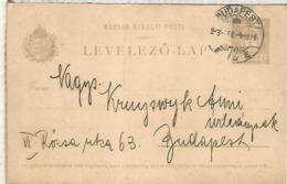 HUNGRIA ENTERO POSTAL 1913  BUDAPEST - Enteros Postales