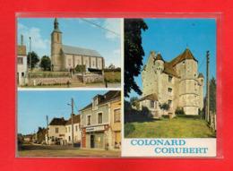 61-CPSM COLONARD CORUBERT - France