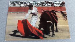 Toros Taureaux Passe De La Droite Pase Con Derecha - Stieren