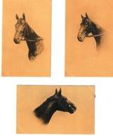 Chevaux Portraits 8 Cartes Série 826 - Chevaux
