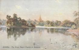 ***  BURMA - BIRMANIE - MYAMMAR *** BURMA  The Shave Dragon Pagoda At Rangoon  Unused TTBE - Myanmar (Birma)