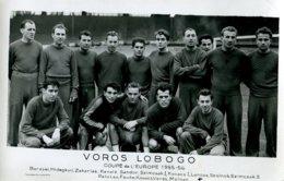 Sport .10005 .football .equipe Hongrie .coupe De L Europe 1955 1956 .carte Postale Photo . - Soccer