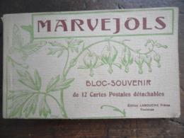 Marvejols (Lozère),carnet 12 Cartes Postales Anciennes Détachables. - Marvejols