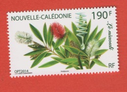 W41 Nouvelle-Calédonie ** 2014 1230 Niaouli - Nueva Caledonia