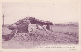 Neuville-de-Poitou - La Pierre-Levée - Neuville En Poitou