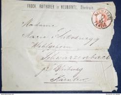 Enveloppe Autriche N.36 De 1882 Oblitéré Neumarktel / Terzig / Slovenie - Covers & Documents