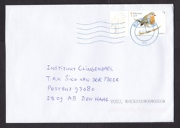 Netherlands: Cover, 2019, 1 Stamp + Tab, Robin Bird, Animal (traces Of Use) - Lettres & Documents