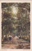 2389158Oisterwijk, ,,Speyk-laan'' (zie Hoeken) - Nederland