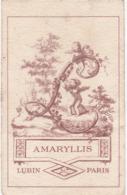 Carte Parfumée Publicitaire : AMARYLLIS : - Lubin - Paris - ( Offert Par La Parfumerie ROBERT - Lyon ) 9cm X 5,5cm - Perfume Cards