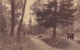 Lubbeek - Pensionnat -une Allée Vers La Grotte - Lubbeek