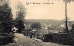 Ottignies - Avenue Du Try - Ottignies-Louvain-la-Neuve