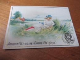 Chromo,Amidon Vermeire Hamme - Chromo