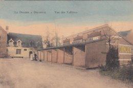 La Donjon A Diegem - Vue Des Voliéres - Diegem