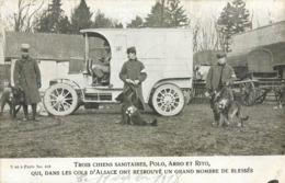 CPA Militaria Trois Chiens Sanitaires Ambulance Croix Rouge Cols D'Alsace Blessés 1ere Guerre Mondiale 1914-1918 - Personnages