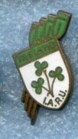 IRELAND Federation AVIRON Rowing Rudern Remo Pin Badge - Roeisport