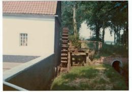 Diepenbeek - Molen - Photographie - Diepenbeek