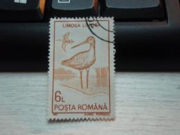 Timbre  Limosa Limosa, Avec Reste De Charnière. Barge à Queue Noire - Usado