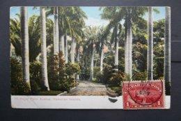USA: 1913 PPC To New Jersey, USA (#SU8) - Storia Postale