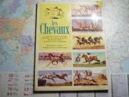 Encyclopédie Par Le Timbre Les Chevaux 1961 - Encyclopédies