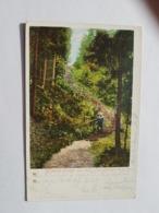 Rauchberg/Rumburk - Böhmen - Stempel Wien  (gelaufen; 1902); H34 - Tchéquie