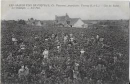 VOUVRAY  : Les  Grands Vins - Vavasseur  Propriétaire- Clos Des ROCHES, Les Vendanges( Au Dos Tarifs Du Domaine Des Bida - Vouvray