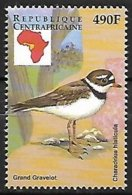 CENTRAL AFRICA - MNH - 1999 :       Common Ringed Plover  -  Charadrius Hiaticula - Otros