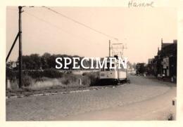 Foto Tram Hamme 10cm*7cm - Hamme