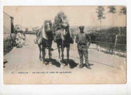 7553 AUVELAIS Haleur - Belgio