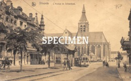L'Avenue De Schaerbeek - Vilvorde - Vilvoorde - Vilvoorde