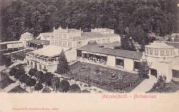 Băile Herculane (Herkulesbad, Herkulesfürdő) * Promenade, Park, Stengel * Rumänien * AK484 - Romania