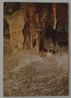 POSTOJNSKA JAMA - JUGOSLAVIA - POSTOJNA - Grotte Cave - DVORANA CEVCIC - SALA DEGLI SPAGHETTI - Jugoslavia
