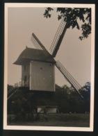 BOKRIJK   FOTO 1964  12 X 9 CM   - MOLEN - Genk