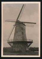 OORDEGEM     FOTO 1964 12 X 9 CM   - MOLEN - Lede