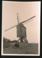 IMPE   FOTO 1964 12 X 9 CM   - MOLEN - Lede