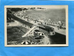 La CIOTAT- La Piscine Et La Plage L'autocar Au Milieu -beau Plan Animé *années 50 -40édit - La Ciotat