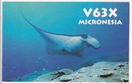 Radio Amateur QSL Card Micronesia - Radio Amateur