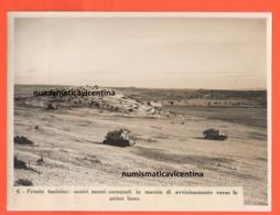 Carri Armati Ansaldo CV33 Deserto Tunisino Tank Tankette II° WW African War - Guerra, Militari
