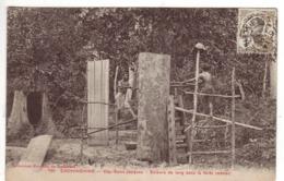 Cochinchine - Cap-Saint-Jacques 130 - Scieurs De Long Dans La Forêt - Collec Poujade De Ladevèze - Viêt-Nam