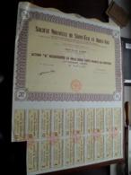 Soc. Nouvelle De SAINT-ELIE Et ADIEU-VAT / Action De Mille Deux Cents Francs - N° 0,041,332 ( Zie/Voir Foto ) ! - Acciones & Títulos