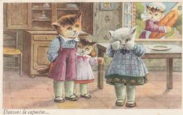 Chats ( Dansons La Capucine ... ) - Animaux Habillés