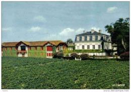 Carte Postale 33. Pauillac  Chateau Pontet-Canet  Grand Crû Classé Cruse Et Fils Prop. Trés Beau Plan - Pauillac