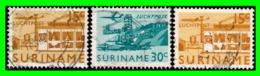 SURINAME 3 SELLOS  NUEVOS CON GOMA - Surinam