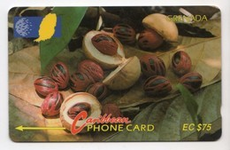 GRENADE CARAIBES CABLE & WIRELESS MV Cards GRE-6D 1993 75$  CN 6CGRD NUTMEG - Grenada (Granada)