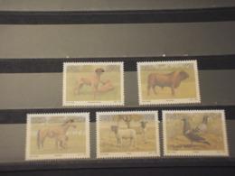 SUD AFRICA/RSA - 1991 ANIMALI 5 VALORI -  NUOVI(++) - Sud Africa (1961-...)