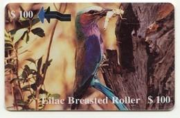 ZIMBABWE REF MV CARDS ZIM-34 100$ Lila Breasted Roller - Simbabwe
