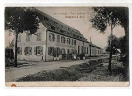 67-1204 HAGUENAU - Haguenau
